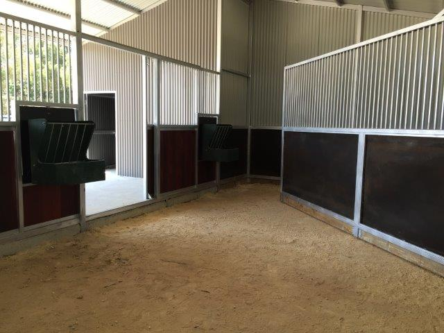 Double stall with swinging deivider to make larger stall for mare and foal