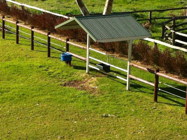 Gate Shelter, to enable to feed horse in open paddock in all weather sun or rain