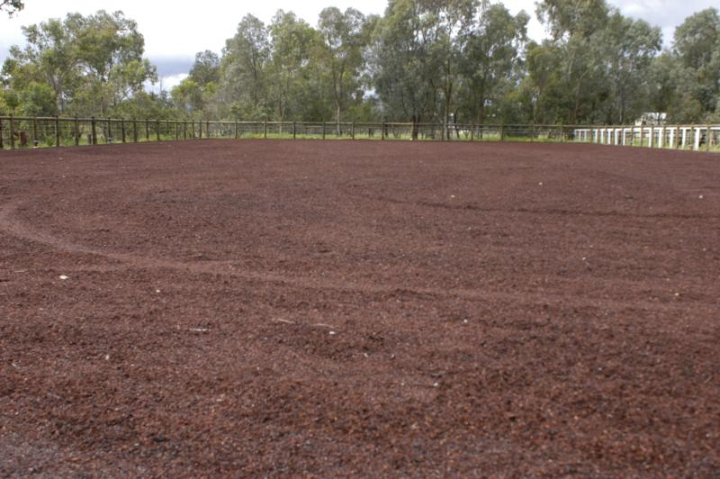 Arena surface River sand and Jarrah screenings