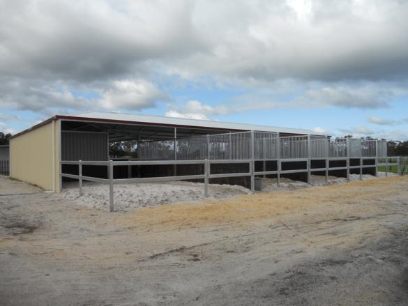 Stables with yards at back all steel bars with steel rails lined with rubber