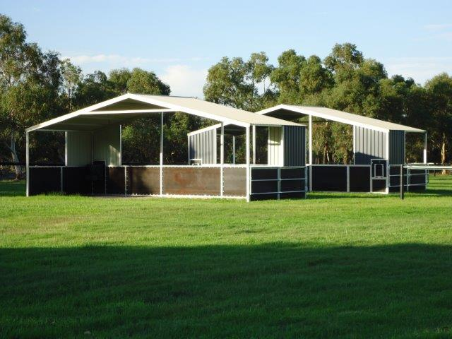 Double Shelters with pull down feeder and hay feeder